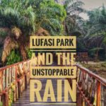 LUFASI PARK AND THE UNSTOPPABLE RAIN
